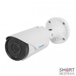 IP-видеокамера Tecsar Beta IPW-4M40V-poe